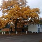 Standon high street
